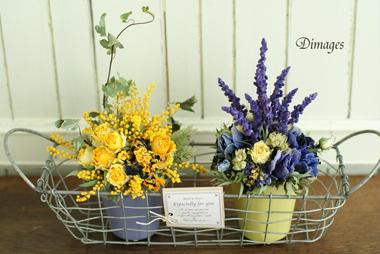 Pot arrangement       3月サンプル作品(4)